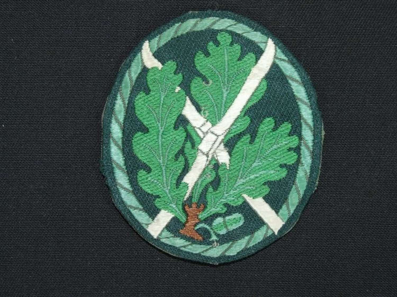 Sleeve Badge for Ski Qualified Troops