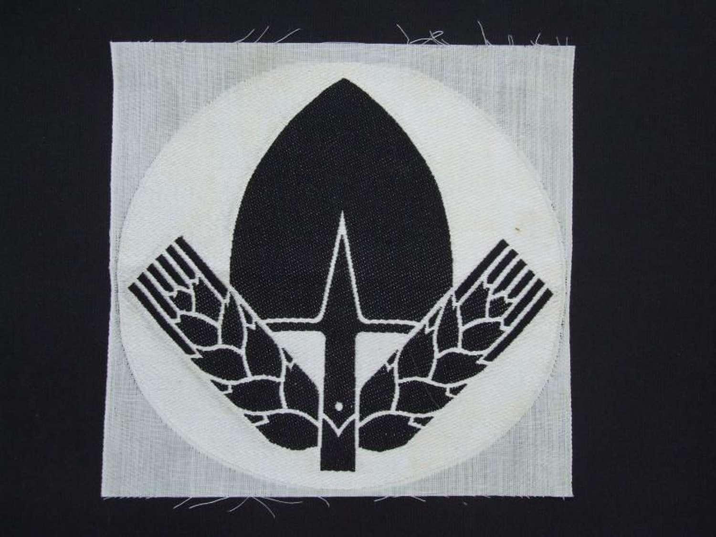 Early RAD Sports Shirt Insignia