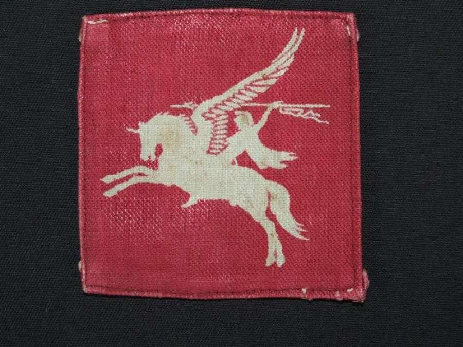 Single Printed Pegasus Patch