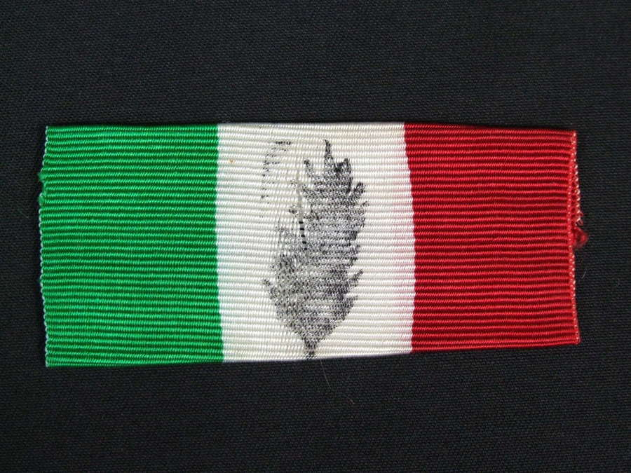 WW11 Italian Cremona Co-Billigerent Forces Arm Badge