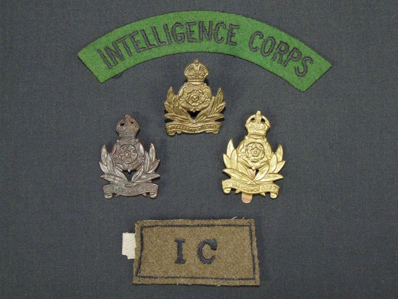 Intelligence Corps Insignia